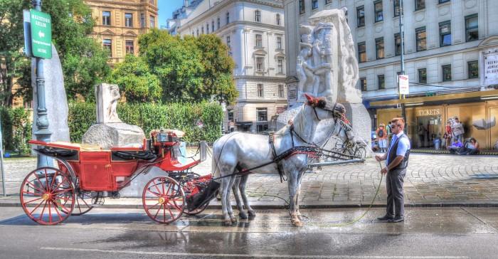 Wasser für die Pferde