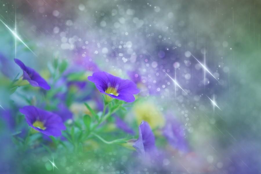 Märchenblumen